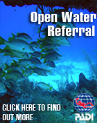 PADI Open WAter Diver referrals in Jamaica with Jamaica Scuba divers